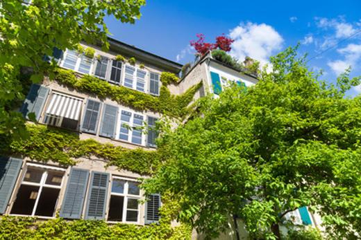 Altbau bewachsen © Tiberius Gracchus, fotolia.com