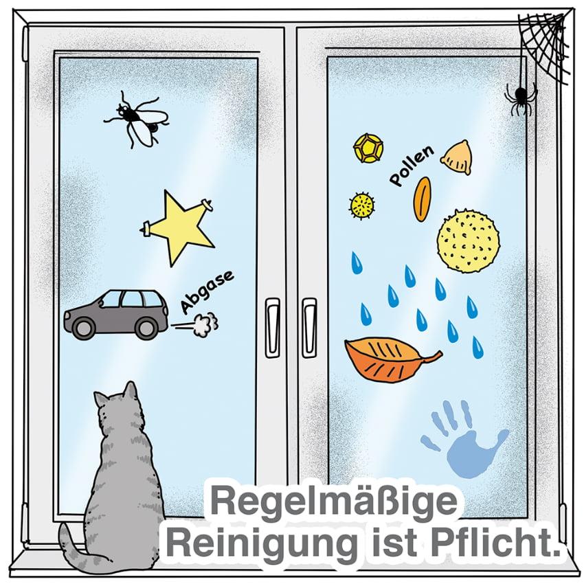 Fenster regelmäßig reinigen