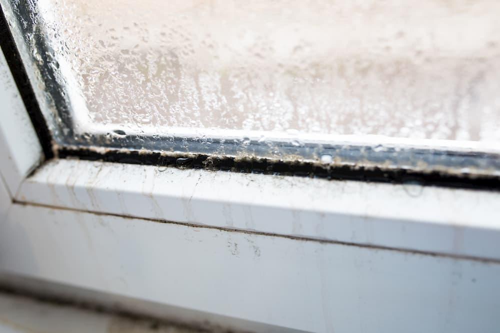 Fenster: Schimmel im Fensterfalz © vfhnb12, stock.adobe.com