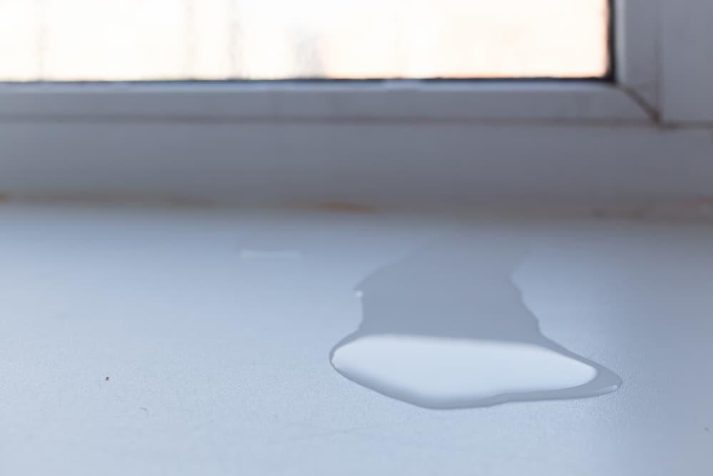 Fenster nicht mehr dicht: Wasser dringt ein © avtk, stock.adobe.com