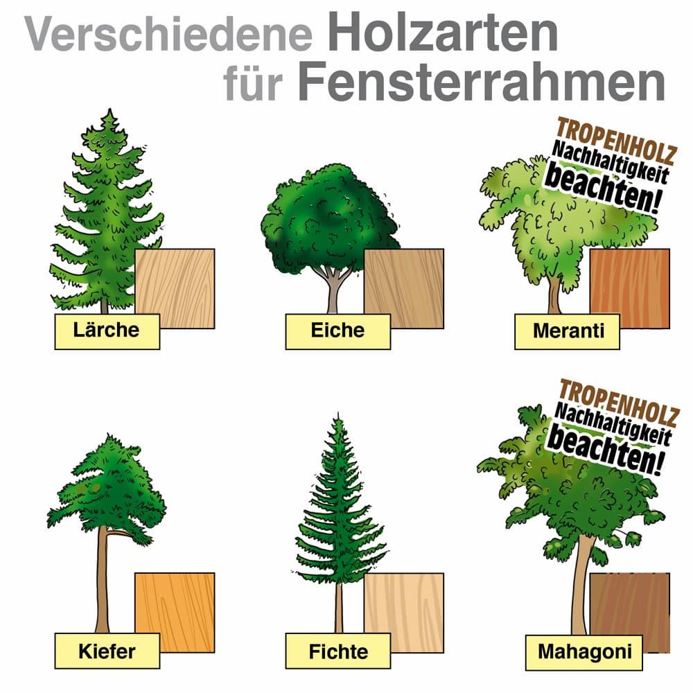 Verschiedene Holzarten für Fensterrahmen