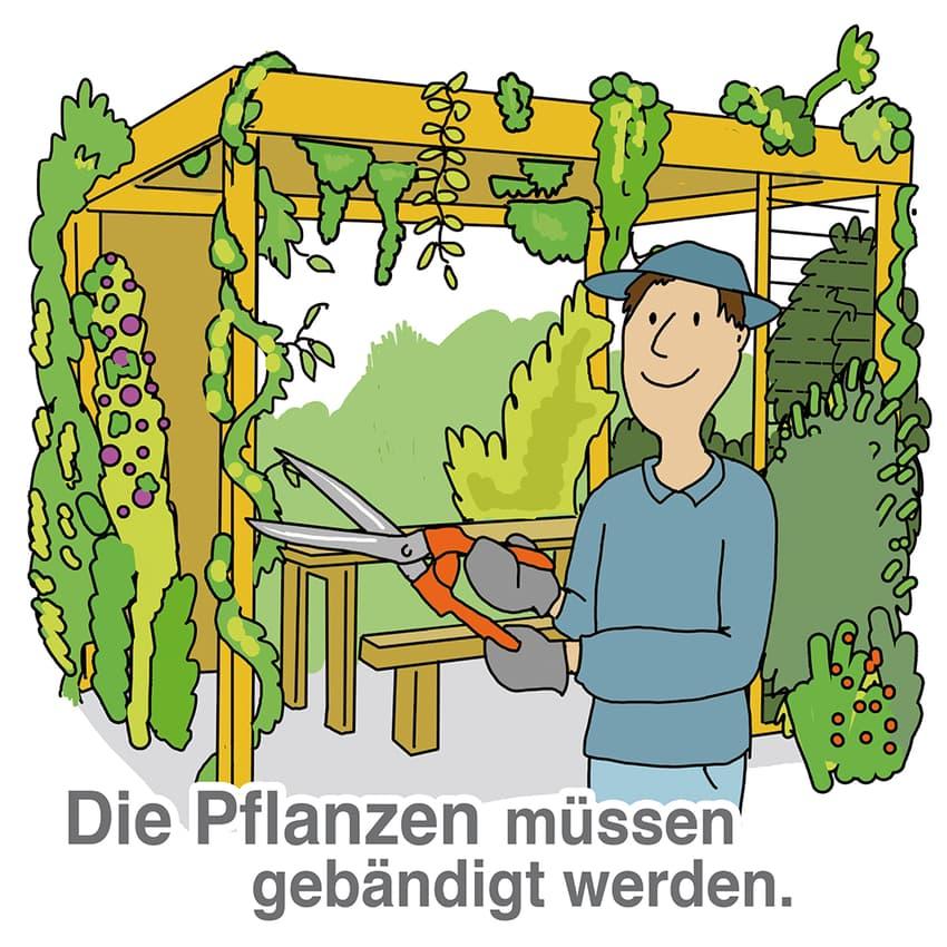 Auch Pflanzen brauchen regelmäßige Pflege